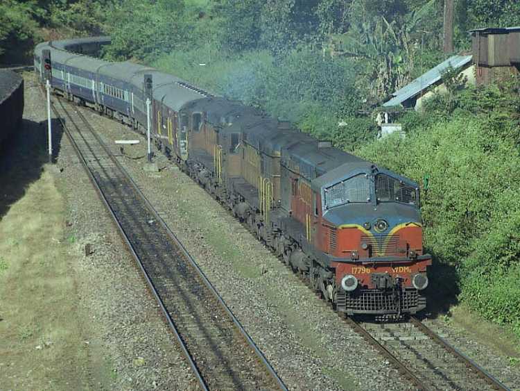 tren a india