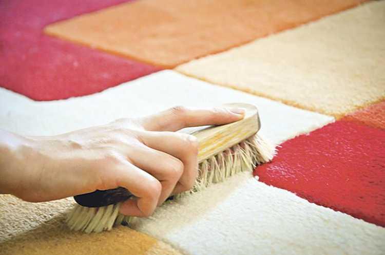 cuidar alfombras