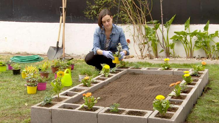 cultivo de hortalizas
