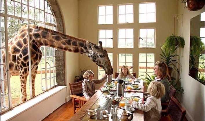 hotel giraffe manor