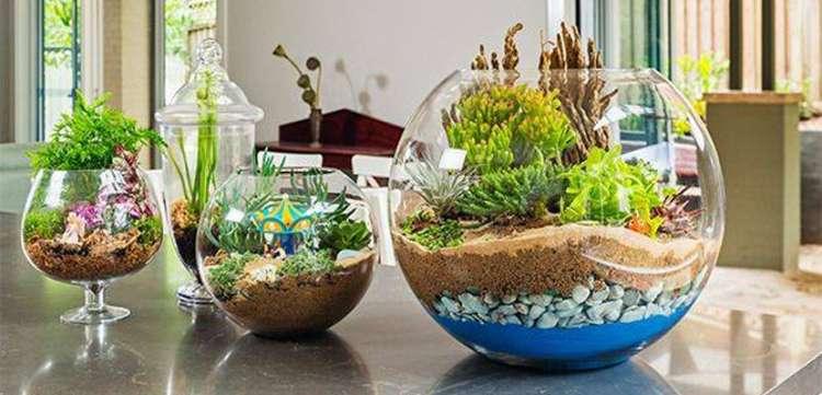 jardin miiatura escritorios