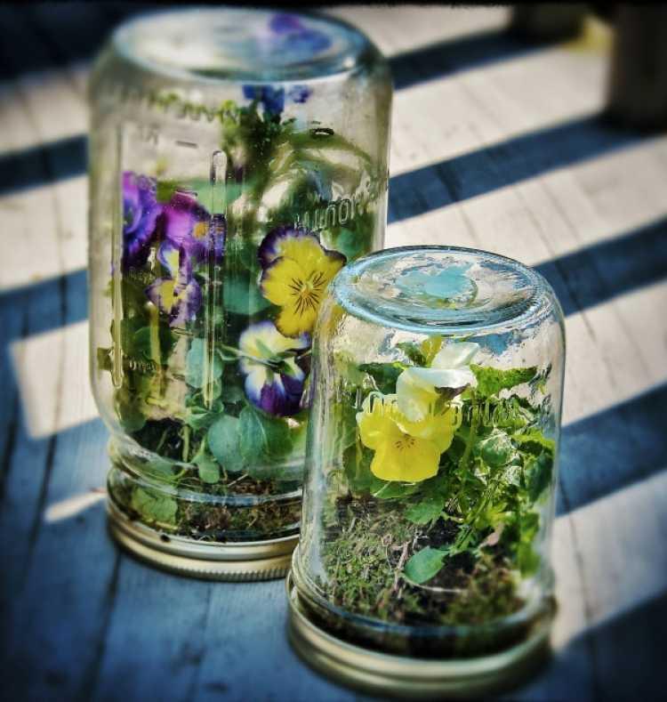 jardin miniatura botellas