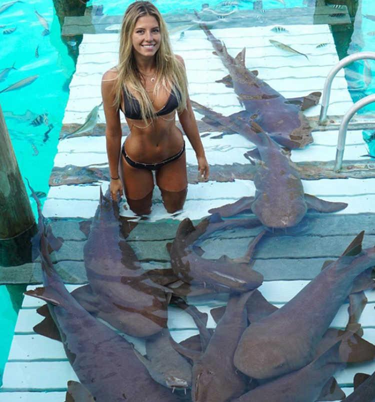 sarah tiburones